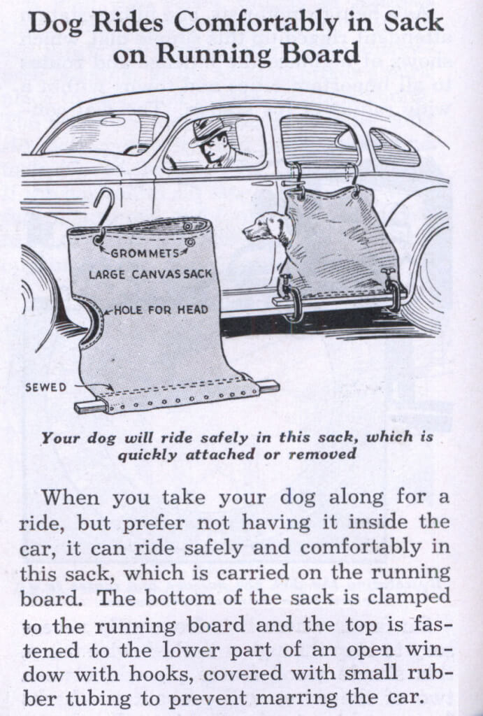 Image of advertisement for a car dog sack