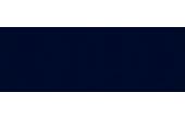 Audi official logo